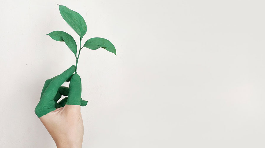 Sustainable Printing: How Managed Print Services Keep You Green